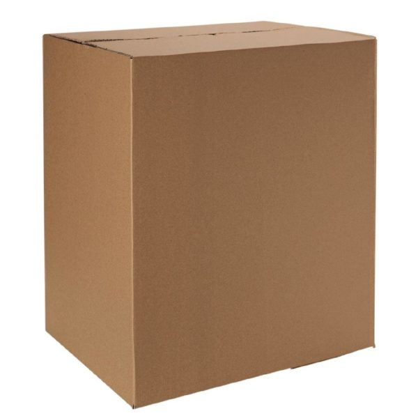 Master Cartons ( shippers )